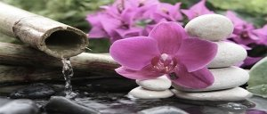 bamboo waterfall stones and pink flowers