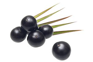 baies d'açai