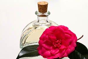 Bouteille en verre avec huile de camélia et fleur de camélia