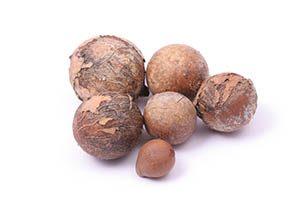 tamanu nuts
