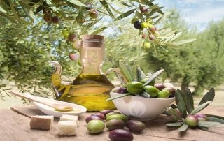 table with olive oil and overhanging olive branches