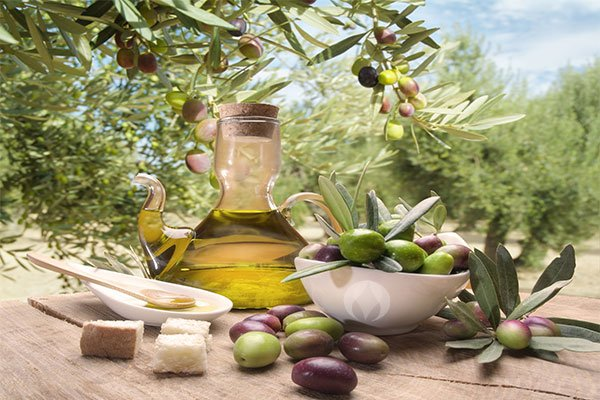 how-to-know-good-quality-olive-oil