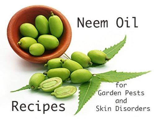Naturally Neem