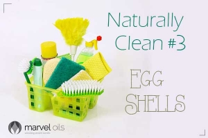 green cleaning caddy