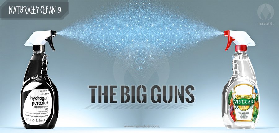 Naturally Clean:  The Big Guns