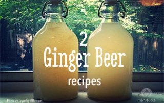 2 bottles of ginger beer