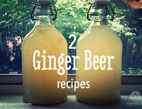 Homemade Ginger beer x2