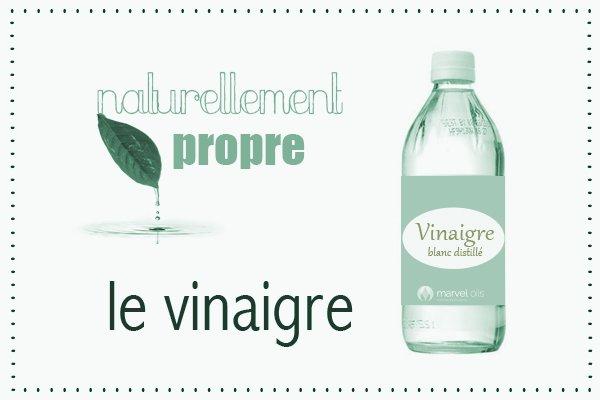 Naturellement propre :  le vinaigre