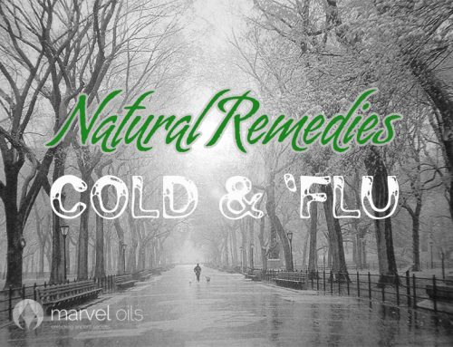 DIY Home Remedies for Cold and Flu'