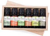 6 plant therapy essential oils in wooden box